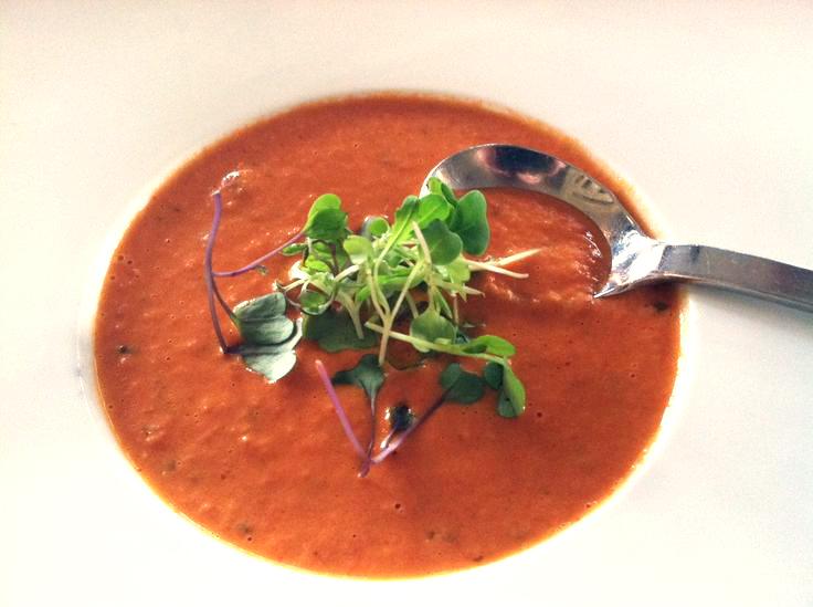 soup gourmet